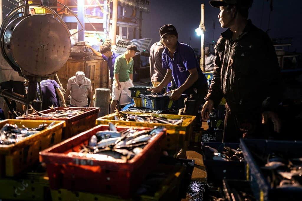 Fotografie-Reportage-Vietnam_HoiAn-Fishmarket-Marina_Schedler-Photography-003