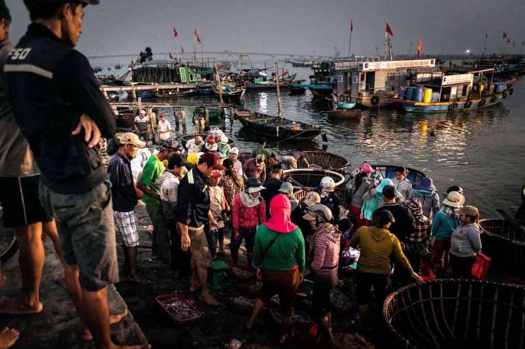 Fotografie-Reportage-Vietnam_HoiAn-Fishmarket-Marina_Schedler-Photography-006