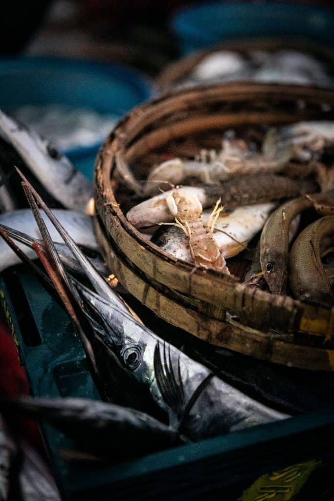 Fotografie-Reportage-Vietnam_HoiAn-Fishmarket-Marina_Schedler-Photography-008