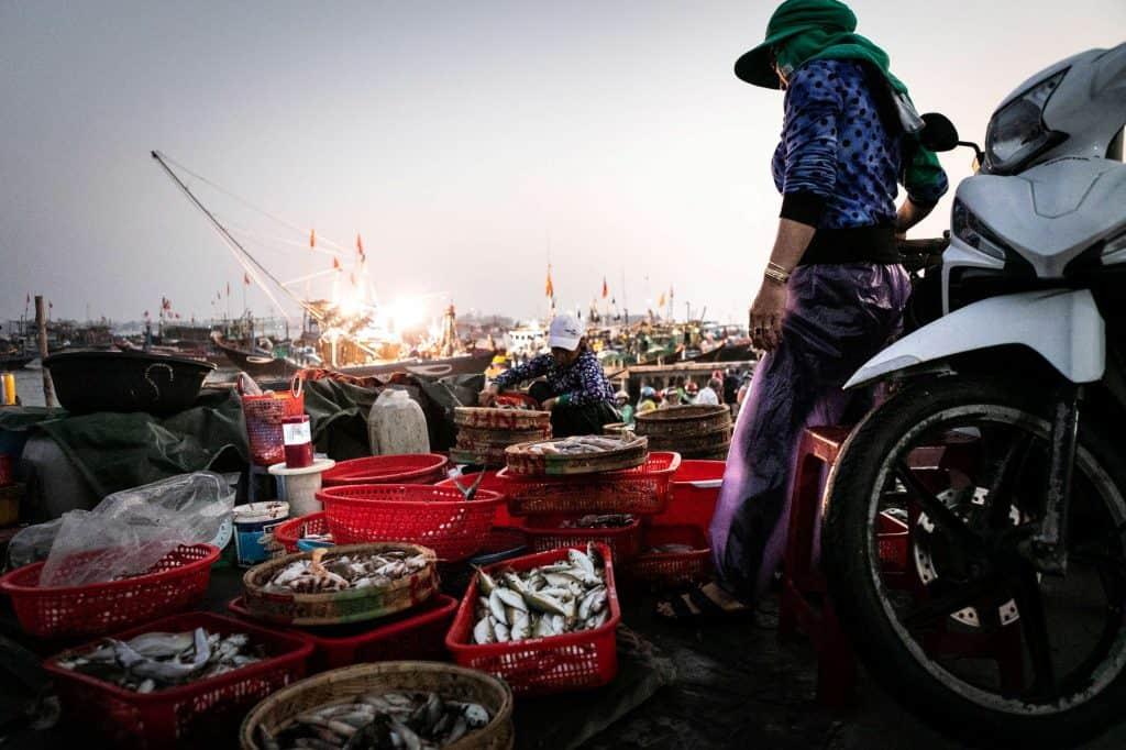 Fotografie-Reportage-Vietnam_HoiAn-Fishmarket-Marina_Schedler-Photography-010