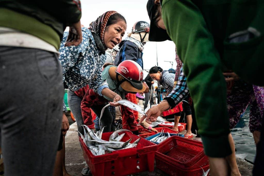Fotografie-Reportage-Vietnam_HoiAn-Fishmarket-Marina_Schedler-Photography-017