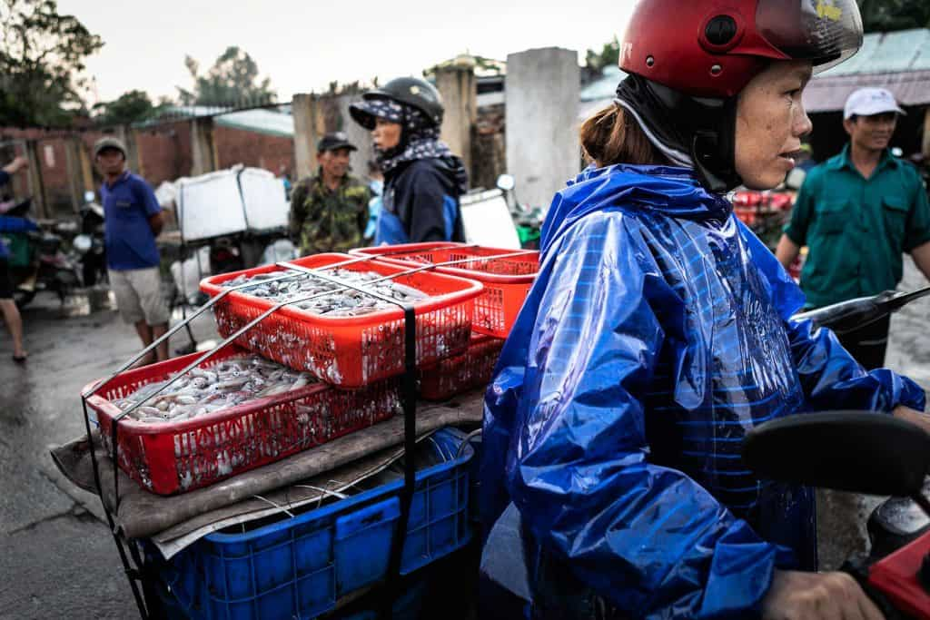 Fotografie-Reportage-Vietnam_HoiAn-Fishmarket-Marina_Schedler-Photography-020