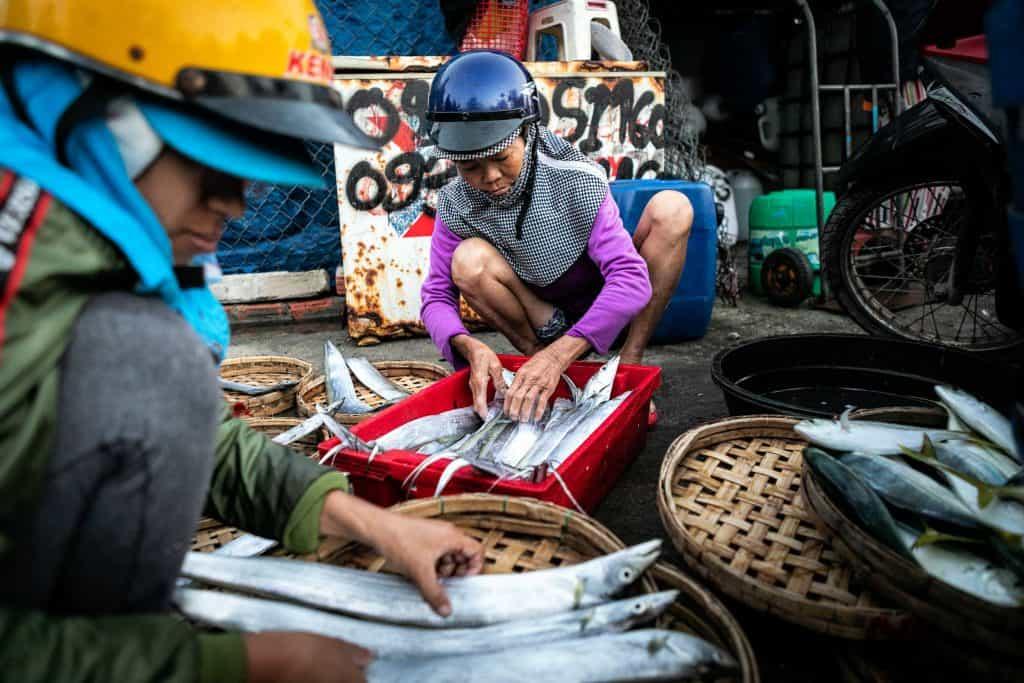 Fotografie-Reportage-Vietnam_HoiAn-Fishmarket-Marina_Schedler-Photography-022
