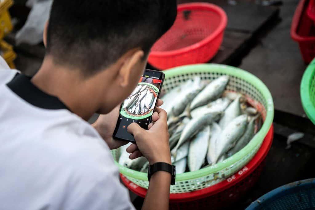 Fotografie-Reportage-Vietnam_HoiAn-Fishmarket-Marina_Schedler-Photography-024