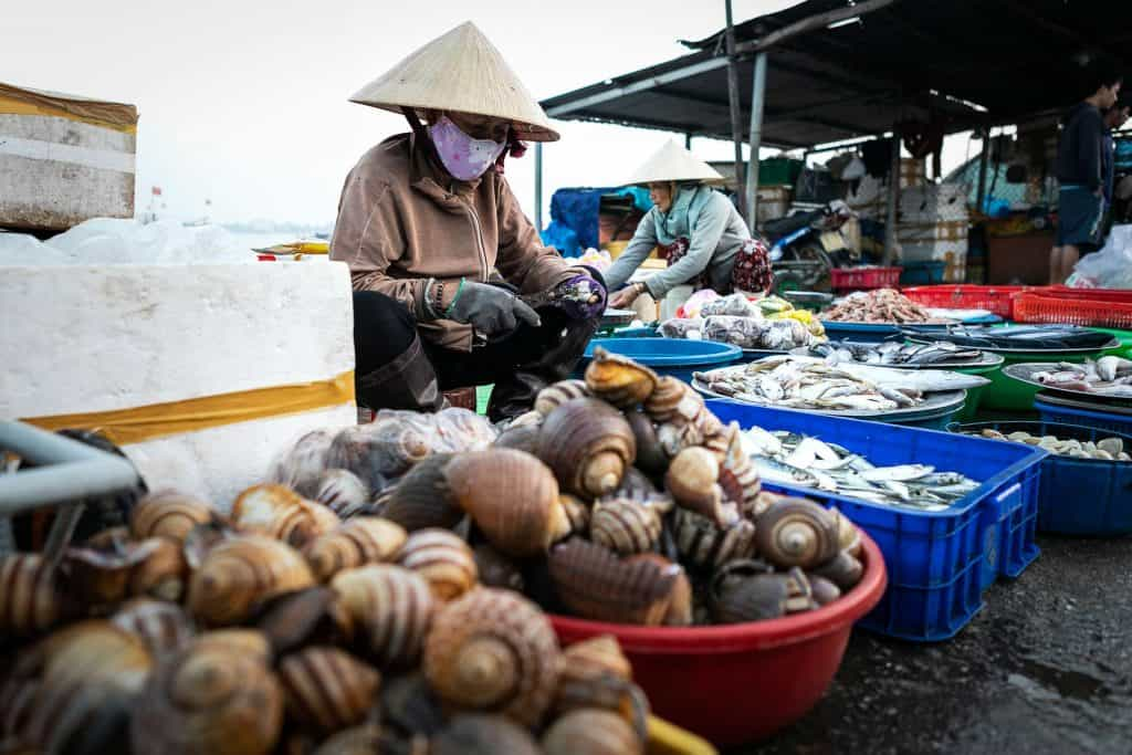Fotografie-Reportage-Vietnam_HoiAn-Fishmarket-Marina_Schedler-Photography-028