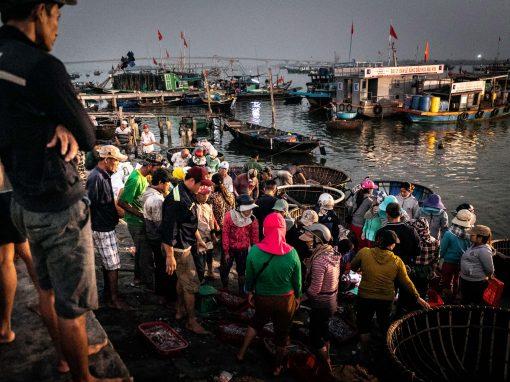 REPORTAGE – FISHMARKET VIETNAM