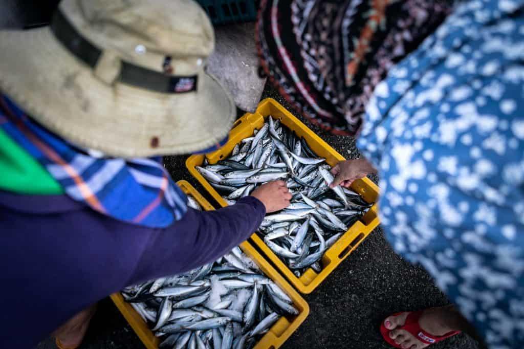 Reportage_Fishmarket_Vietnam_Marina_Schedler_Photography_021